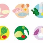 植物性タンパク質と動物性タンパク質の違いとダイエット効果は?